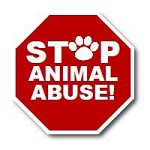 Animals Of Hope
