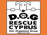 Dog Rescue Cyprus