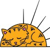 Sunny Harbour Cat & Kitten Rescue