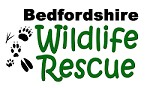Bedfordshire Wildlife Rescue