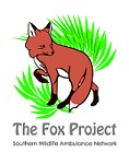 Southern Wildlife Ambulance Network / The Fox Project